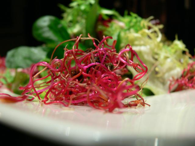 Salatbouquet